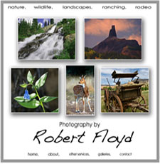 Robert Floyd PHotography