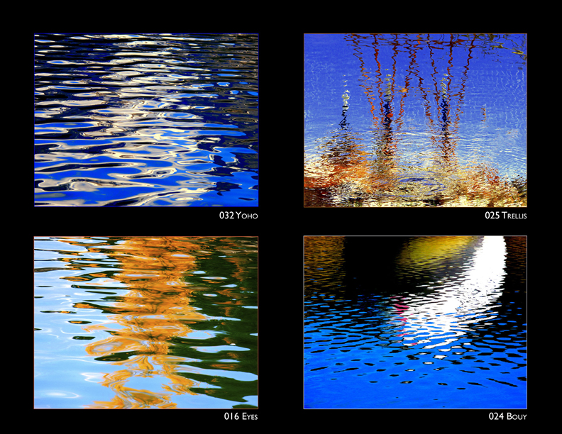 Cecily Anne Art Photograhy Water/Trees