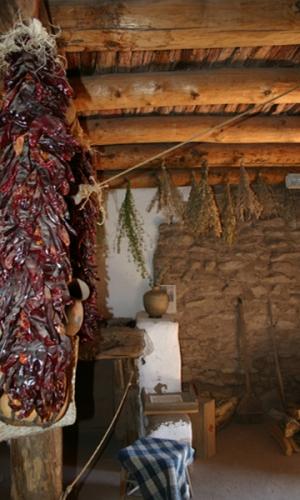 Golodrinas Chilis