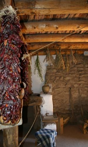 golondrinnas-chilis