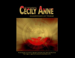 Cecily Anne Art Photography