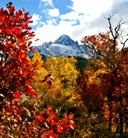 photo-red-oak-sneffles